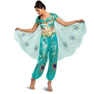 Disney Aladdin Jasmine peacock Teal Deluxe Costume